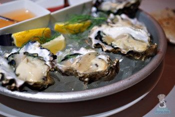 Palmeiras' Oysters