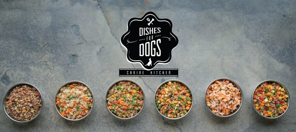 dishes-for-dogs